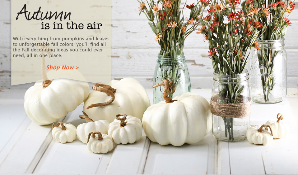 Shop Fall Decor Now