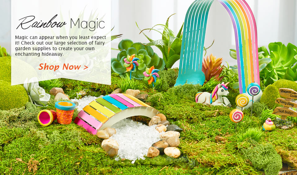 Shop Our Fairy Garden Collection Now