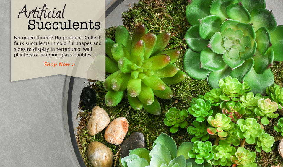 Shop Artificial Succulents Now