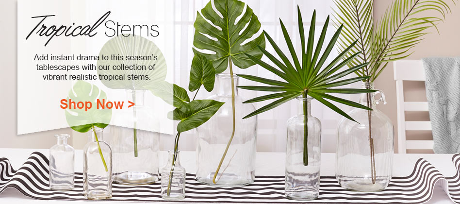 Shop Our Tropical Stems and Plants Now