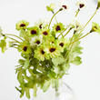 Apple Green Artificial Daisy Bush