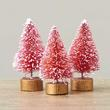 Miniature Frosted Pink Bottle Brush Trees