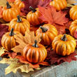 Autumn Artificial Mini Pumpkins and Leaves