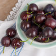 Realistic Artificial Cherries from Winward Floral