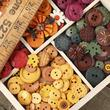 Assorted Fall Collection Buttons