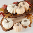 Assorted Harvest White Artificial Pumpkins