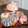 Assorted Frosted Pumpkins and Gourds