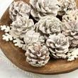 White Washed Pinecones and Wood Snowflake Cutouts