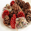 Plaid Holiday Pinecones Mixture