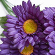 Purple Artificial Gerbera Daisy Bush