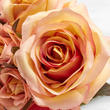 Apricot and Pink Artificial Rose Nosegay Bouquet
