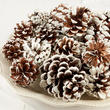 Frosted Natural Pinecones