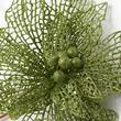 Green Sparkling Mesh Poinsettia Stem