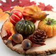 Artificial Pumpkins, Leaves, and Acorns Autumn Decor Set