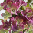Green and Plum Artificial Hydrangea Spray