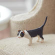 Miniature Standing Black and White Cat
