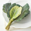 Artificial Chinese Broccoli Leaves