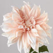 Pink Long Stem Artificial Dahlia Stem