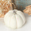 Small White Artificial Baby Boo Pumpkin - Seconds