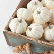 Small White Artificial Baby Boo Pumpkins - Seconds