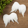 Iridescent Glitter Feather Angel Wings
