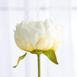 White Artificial Peony Pick