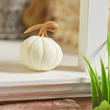 Handcrafted Miniature White Pumpkin