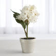 Artificial Potted White Hydrangea Flower