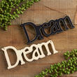 """Dream"" Script Ornament"