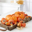 Assorted Harvest Orange Artificial Pumpkins and Gourds