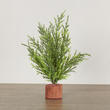 Small Artificial Ceder Pine Tree