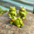 Miniature Frogs