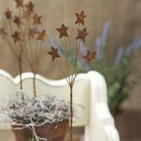 Rusty Tin Star Pick