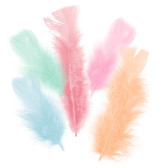 Light Olive Marabou Feathers 20 or 40 pcs boutonnieres scrapbooking Fascinators crafts craft feathers
