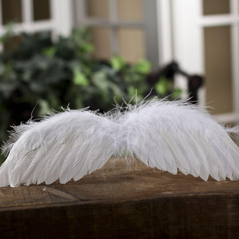 Real White Feather Angel Wings Angel Wings