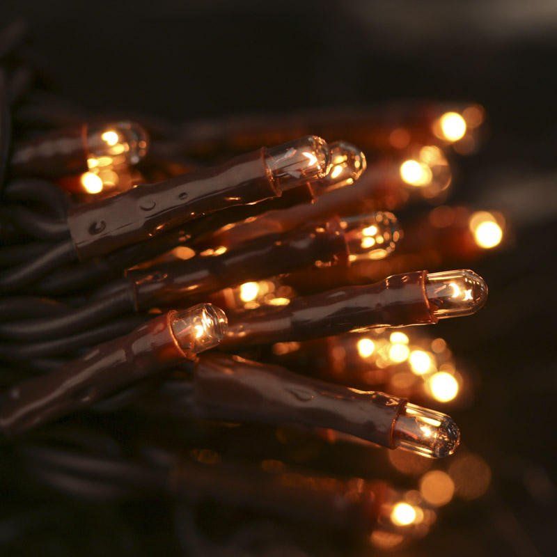 Clear Bulb and Brown Cord Teeny String Lights - Lights and Lighting - Party Supplies - Party ...