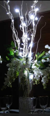 25ct Battery Operated Led Angel Tear Lights String
