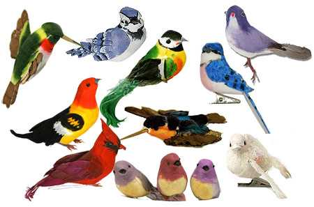assorted artificial birds birds butterflies basic