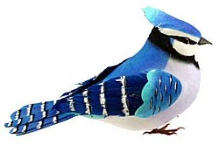 6 1 2 feathered blue jay artificial bird birds for Feathered birds for crafts