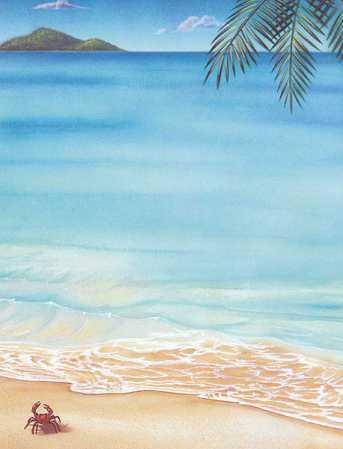 essay on a beach scene