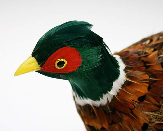 Natural feather artificial pheasant birds butterflies for Synthetic feathers for crafts