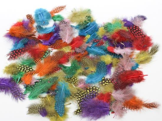 Assorted natural loose guinea feathers craft supplies - Plumas para decorar ...