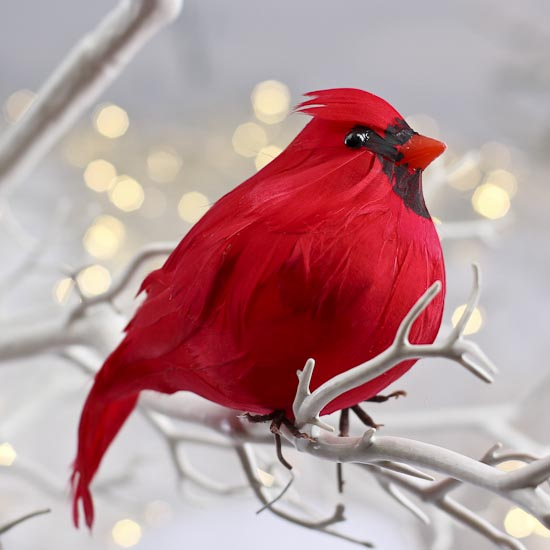 Plump artificial feathered cardinal birds butterflies for Feathered birds for crafts