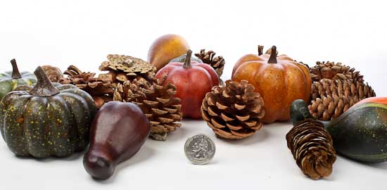 Diy Chestnut Fall Crafts For Kids And Adults X together with B F Bf C E Aeb Bcbf also Pineapple as well Pinecone Crafts For Kids further Diy Fall Centerpieces. on halloween crafts with pine cones