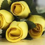 Yellow Wood Rose Bud Stems
