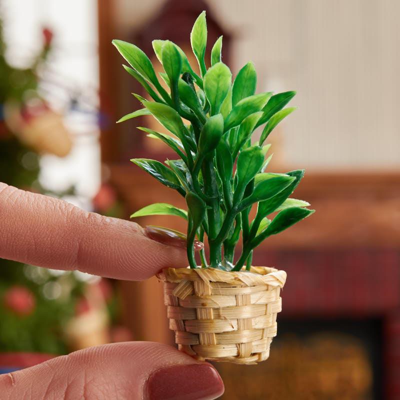 Dollhouse Miniature Fern Plant In Basket Fairy Garden