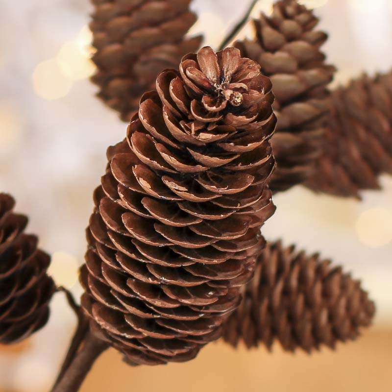 Natural Pinecone Spray - Holiday Florals - Christmas and ...