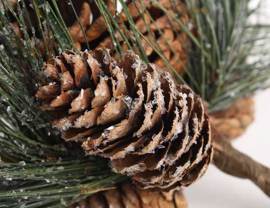 "8"" Frosted Pine Cones And Artificial Wispy Pine Drop"