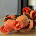 Orange Wood Rose Bud Stems