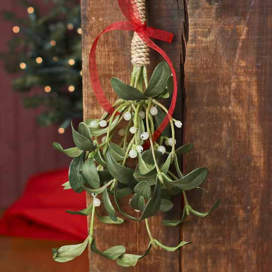 Hanging Artificial Mistletoe Holiday Florals Christmas